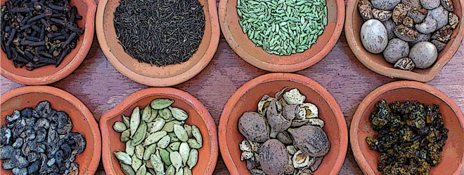 12 culinary herbs… a free lecture