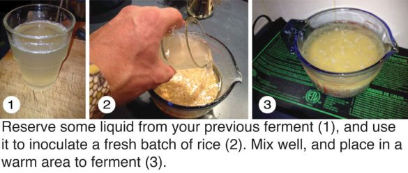 fermented_rice_6